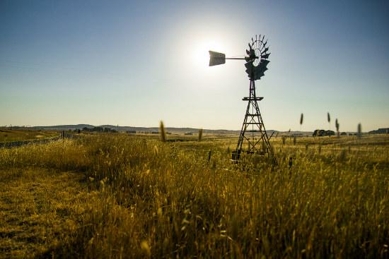 11_Farmer confidence falls Rabobank
